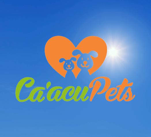 paraguayanzeiger.com-logo-mit-hintergrund-1