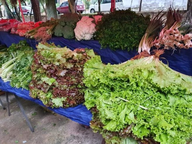paraguayanzeiger.com-shopping-mercado-sanber-240998902_3700583326833373_6806117728362363472_n