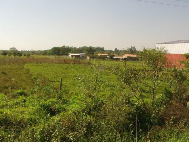 paraguayanzeiger.com-imag0068