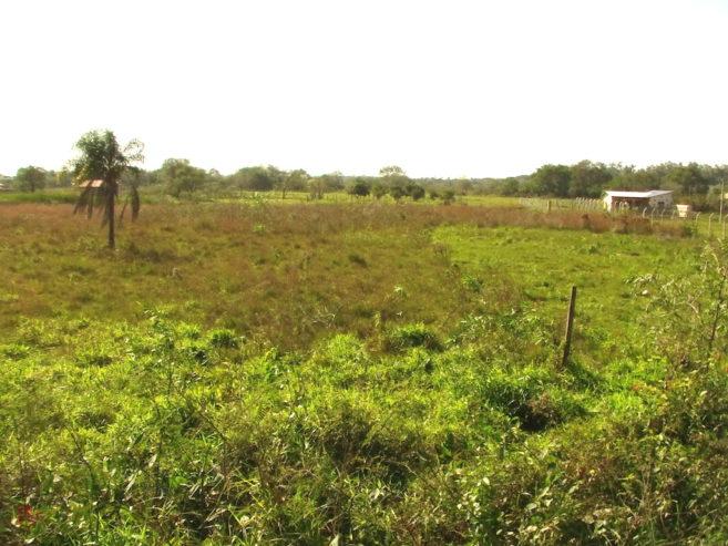 paraguayanzeiger.com-rtcl-auto-temp-imag0069